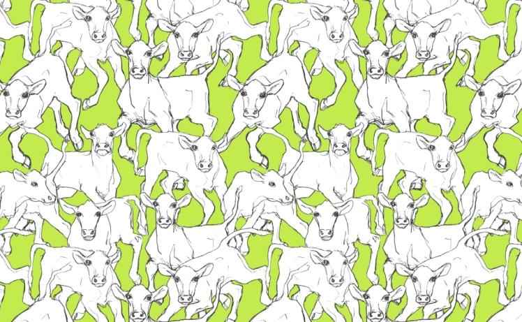 marimekko-iltavilli-wallpaper